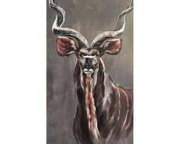 """Bild """"Kudu"""""""