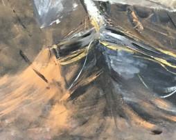 Bild 'Schwarze See' - Detailansicht 1