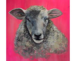 Bild 'Schaf auf Neonpink'