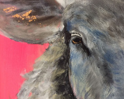 Bild 'Schaf auf Neonpink' - Detailansicht 1