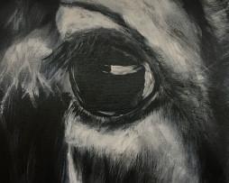 Bild 'Kuh S/W' - Detailansicht 1