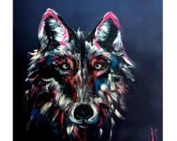 Tomaso - der Wolf